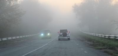 Туман: правильное управление автомобилем.