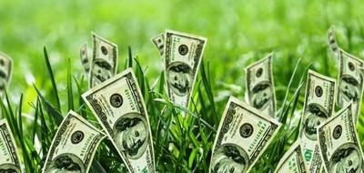 «Rental» - территория стабильного курса доллара!
